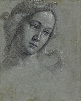 Vittore Carpaccio. Female head