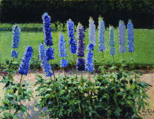 In the garden. A bed of delphiniums