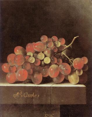 Адриан Коорт (Коорте). Натюрморт с виноградом