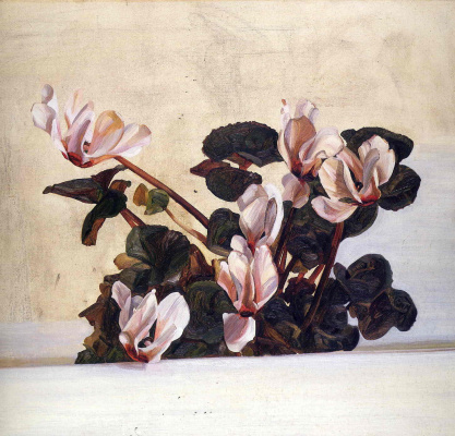 Lucien Freud. Cyclamen