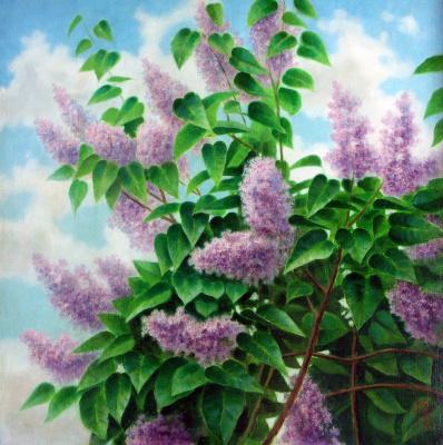Марат Ильгизович Кадышев. Purple colour