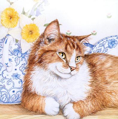 Дебби Кук. Кот