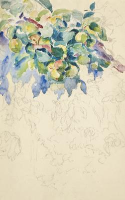 Giovanni Giacometti. Branch of Apple. Sketch