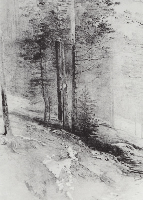 Alexey The Kondratyevich Savrasov. Forest