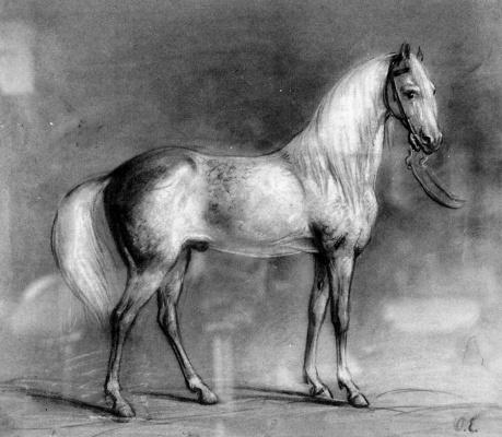 Отто Еерелман. Лошадь