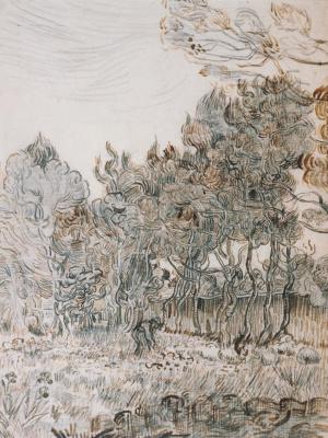 Винсент Ван Гог. Угол сада госпиталя Сен-Поль в Сен-Реми
