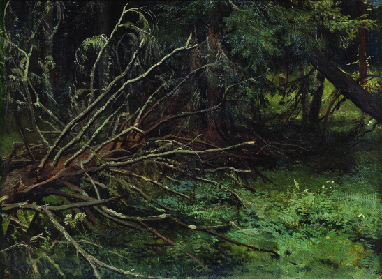 Ivan Ivanovich Shishkin. In the spruce forest