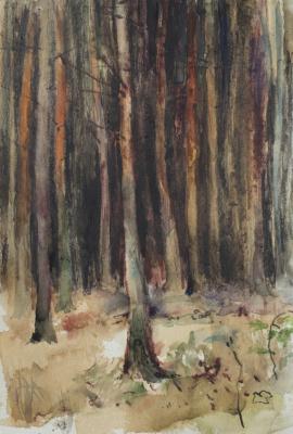 Anatoly Vasilievich Smagin. Таинственный лес