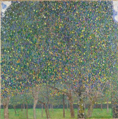 Густав Климт. Грушевые деревья