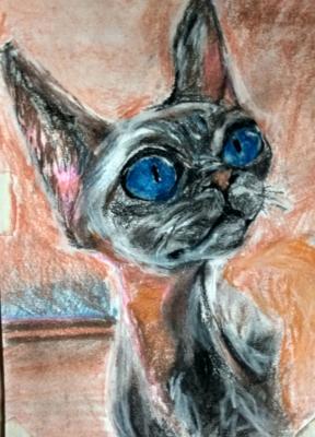 Yuri Valeryevich Churilov. Cat