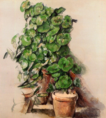 Paul Cezanne. Geranium