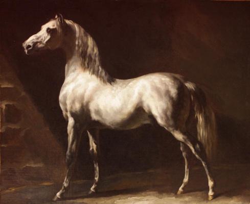 Théodore Géricault. Gray horse Etude