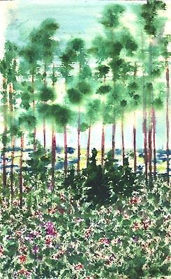Natalya Garber. The sea through the pines