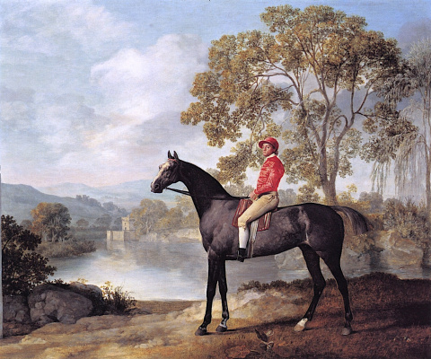 George Stubbs. Euston horse with jockey
