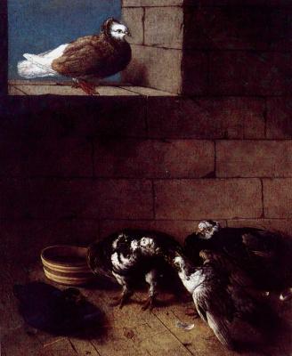 Johann (Ivan Fedorovich) Friedrich Groot. Pigeons