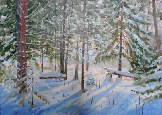 Александр Ягодкин. Горелое болото.Зима