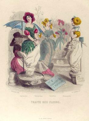 "Jean Inias Isidore (Gerard) Granville. Flower market. The series ""Animate Flowers"""