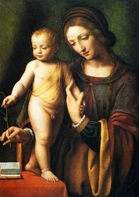 Бернардино Луини. Дева с младенцем и Коломбина