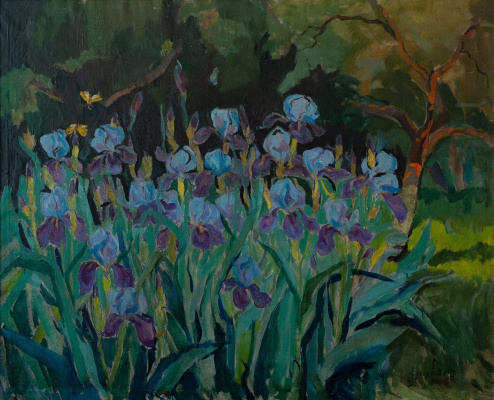 Adalbert Mikhailovich Erdeli. Irises