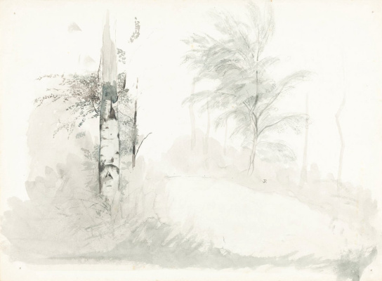John Ruskin. Sketch of trees
