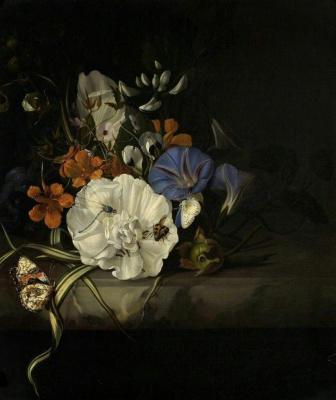 Рашель Рюйш. Опыление цветов