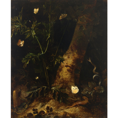 Otto Marceus van Scriec. Forest still life with salamander, snake and butterflies around the thistle