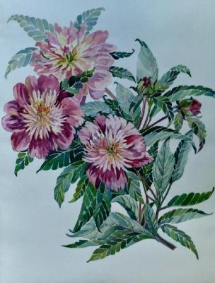 Lilia Georgievna Evsyukova. Imperial flower