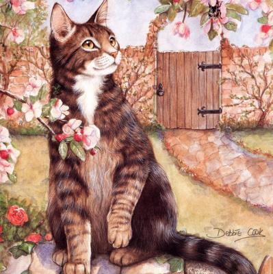Дебби Кук. Кот у ворот