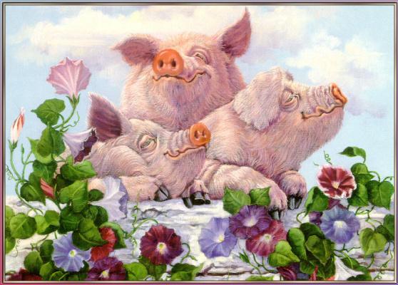 Джоан Райт. Свиньи
