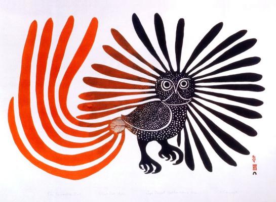 Кеноюак Ашевак. Очарованная сова