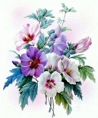 Букет: роза Шарона (Гибискус Сириакус)