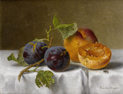 Emily Prairie. Plums and apricots