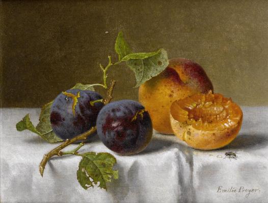 Эмили Прейер. Сливы и абрикосы