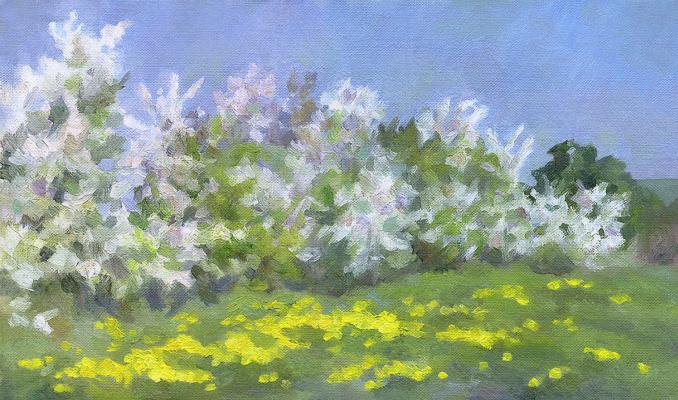 Andrei Ivanovich Borisov. Cherries and dandelions