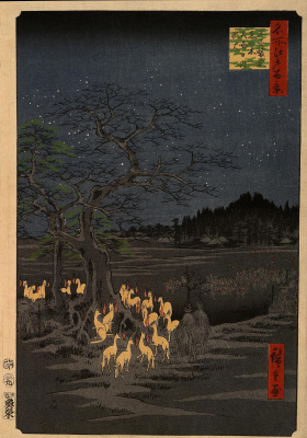 """Fox lights"" on the last day of the year, the iron wood in Suzaku, in the heart of ozy"