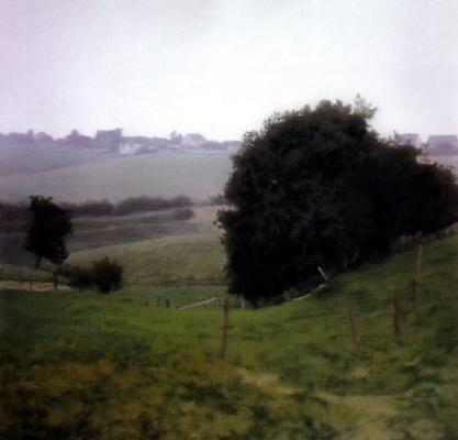 Gerhard Richter. Meadows