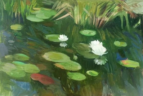 Валкрия Александровна Устюжанина. Water lilies
