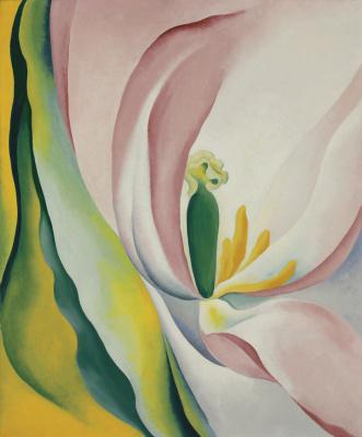 Джорджия О'Киф. Розовый тюльпан