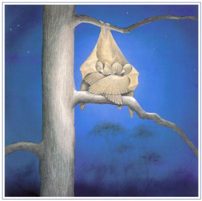Джанелл Кэннон. Иллюстрация к детской книге Стеллалуна 22