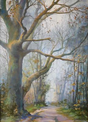 Vladimir Travkin. Autumn foggy.