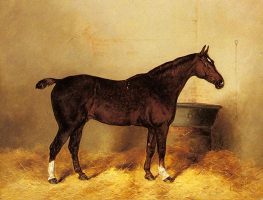 Генри Фредерик Лукас. Гнедая лошадь