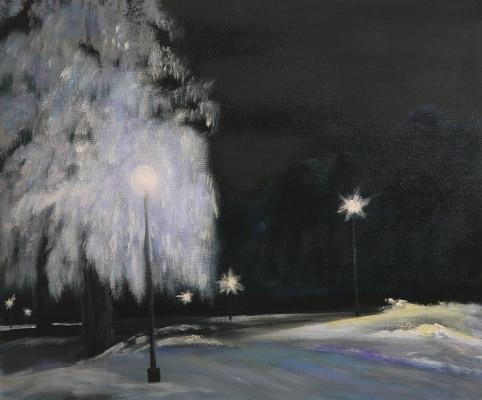Владимир Фесик. Зимний парк