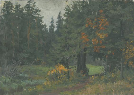 Dmitry Arkadevich Laptev. Vyatka forest