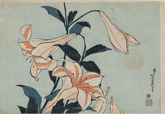Katsushika Hokusai. Lily
