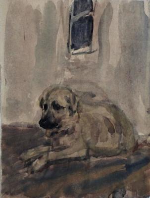 Andrey Mikhailovich Ponomarev. Dog