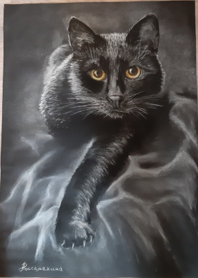 Lyudmila Alexandrovna Rossamakhina. Black cat