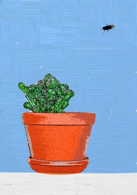 Random Human. Cactus