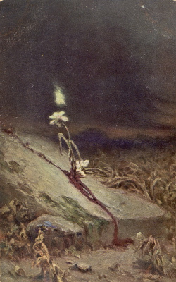 Wilhelm Kotarbinsky. The grave of a suicide