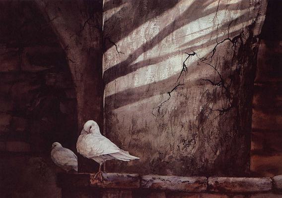 Золтон Сабо. Белые голуби