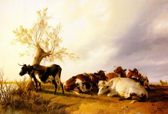Томас Сидней Купер. Молочные коровы отдыхают